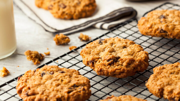 oatmeal chocolate chip lactation cookies with fenugreek cooling on cooling sheets